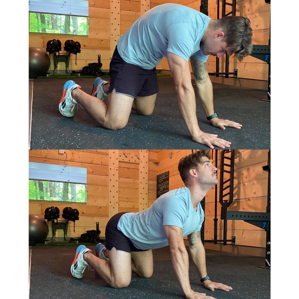 thoracic spine mobility - shoulder function